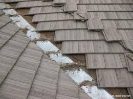 debris in your gutters
