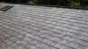Fiberglass Showing on roof times